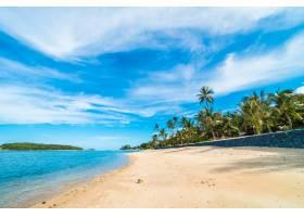 美丽的热带海滩大海和沙滩蓝天白云上有_4188228