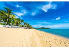 美丽的热带海滩大海和海洋椰子树伞和_5175152