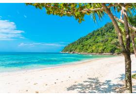 美丽的热带海滩大海椰子和其他树木环绕着_11408969