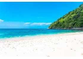 美丽的热带海滩大海椰子和其他树木环绕着_11414277