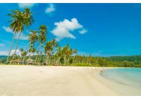 美丽的自然热带海滩和大海_4123130