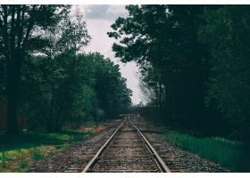 被树木包围的火车轨道的美丽镜头_7848658