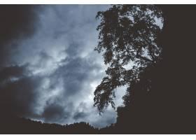 边缘生长着树木剪影的黑暗山峰_1277965