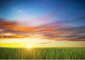 日落时分的绿色田野_947162
