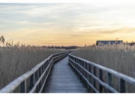 日落时分被草包围的长长的木制码头_13235564
