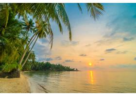 椰子树周围有海滩和大海的美丽天堂岛_4099061