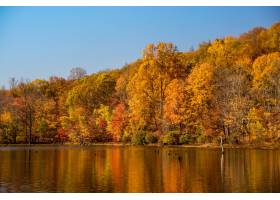 湖边森林的美丽镜头和五颜六色的秋树在水中_9184555