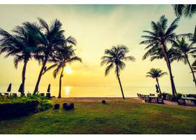 海滩和海边美丽的椰子树_3660481