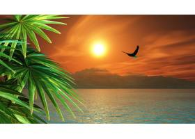 热带景观中飞越海洋的鹰的3D渲染_1166109