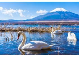 环山中古湖富士山风光秀丽_3796925