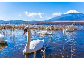 环山中古湖富士山风光秀丽_3796926