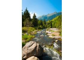 瑞士阿尔卑斯山山河流经山林的景观_11181711
