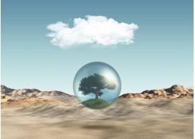 在沙漠景色的衬托下地球上的树木_4783100