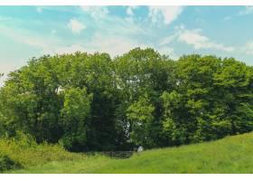 多塞特郡韦茅斯洛德穆尔郊野公园明亮天空下_10944276