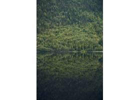 挪威风平浪静的湖中美丽的树木覆盖的山峰_9991072