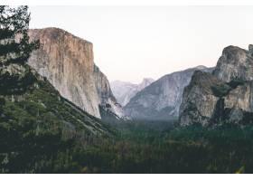 低角度拍摄岩石下的绿色森林和背景中的天空_9282999