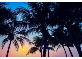 印度岛屿地平线图案棕榈树_1088331