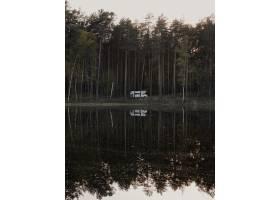 公园湖面上高大树木倒影的垂直镜头_13234954