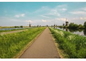 前景为绿草的传统荷兰风车_10191032
