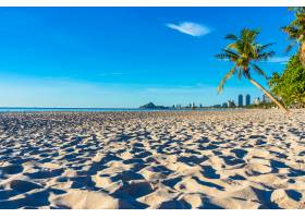 美丽的热带户外自然景观有椰子树的海滩_4559265