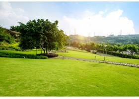 草原景观绿化环境公园背景_1145634