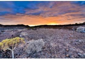 西班牙加那利群岛落日天空下一片岩石丛林的_10584357