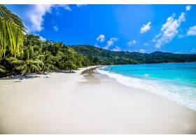 塞舌尔普拉斯林的海滩在阳光和蓝天下被_11486730