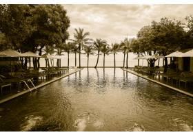 带游泳池的海滩上的剪影棕榈树_3817587