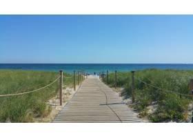 去海滩的路_922643