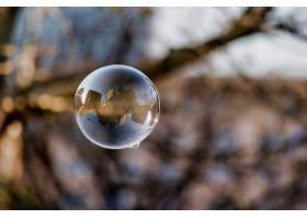 泡沫的软焦点上面有城市建筑和树木的反射_11062820