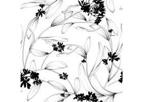 植物和草本植物的无缝图案用于设计或邀请_3330384