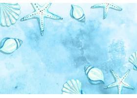 以海星和贝壳为背景的夏季水彩画_8271273