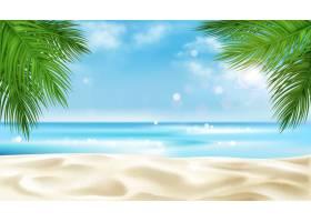 夏季以棕榈树树叶为背景的海滨_5603417
