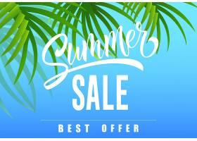 夏季促销最好提供天蓝色背景棕榈叶的季节_2542110