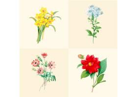 一套美丽的盛开的野花_3529969