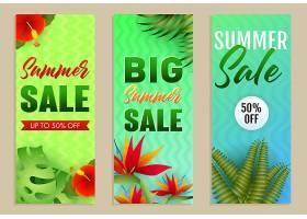 夏季大减价信纸套装热带树叶和鲜花_4558968