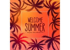 夏季热带落日背景下有棕榈树_4535015