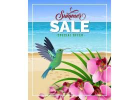 夏季特价印有沙滩和蜂鸟的字样_2542098