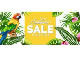 夏季特价有棕榈叶热带花朵和鹦鹉的特价_2542123