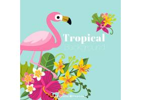 五颜六色的热带背景平面设计_2720303