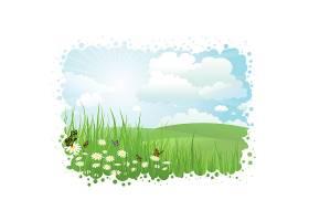 草丛中有蝴蝶和雏菊的夏季景观_884015