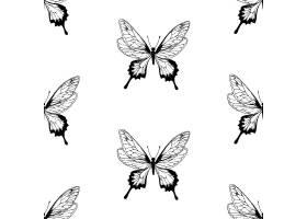 蝴蝶图案_1292892