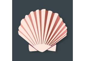 贝壳矢量图平面设计_2904002