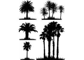 热带树木剪影集_1090544