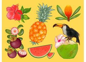 热带水果和花卉插图_3415174