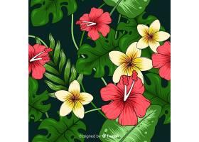 热带背景五颜六色的花朵_2818966