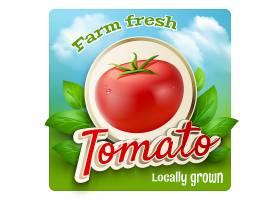 番茄宣传海报_2869751