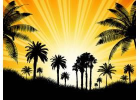 热带背景阳光明媚的天空衬托着棕榈树_1106870