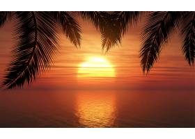 日落天空映衬下的棕榈树_1808440
