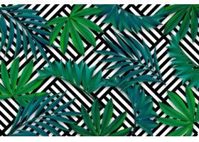 带几何壁纸的热带树叶_7970745